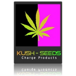 Kama Kush Cannabis Seeds