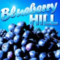 Blueberry Hill 10ml -12mg strength